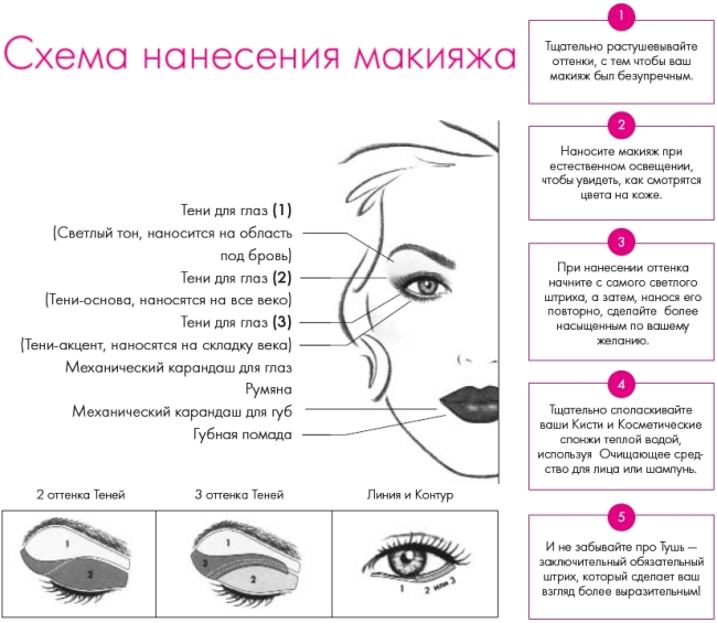 Поэтапное нанесение основ для макияжа